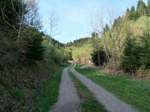 Wanderwege in Ohlsbach
